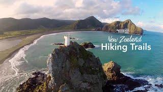 Hillary Trail AERIAL Teaser - Auckland Council NZ