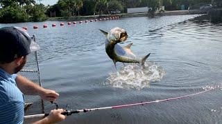 **SPILLWAY GIANTS** Fishing For the Spillway Monster!