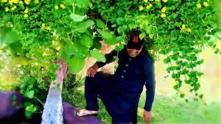 Tery Jay Sohny Allah Nit Nai Branda