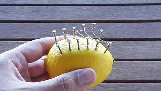 How To Make Fire With A Lemon