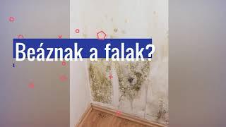 Beáznak a falak? Van megoldás!
