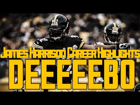 James Harrison Career Highlights