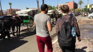 10. D&I – Studietur Marokko