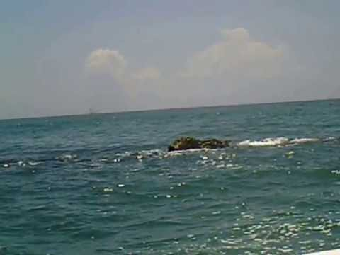 Cape lookout nc rock jetty youtube for Cape lookout fishing report