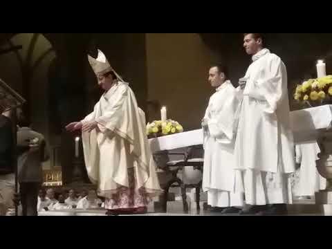 Consacrazione Diacono Francesco Alpi 2