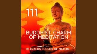 Meditation Music: Realization.mp3