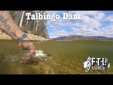 FTL Lures - Exploring Talbingo Dam