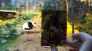 Match Attax 12 13 Outdoor Craze Opening packets with Kungfu Panda in Hong Kong Ocean Park