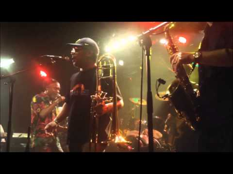 Horace Andy Live @le Plan 22-033-2013 part 1