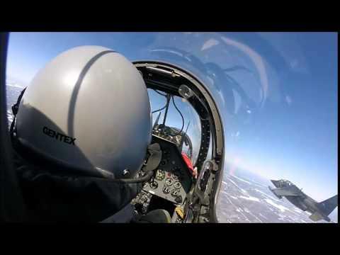 Dassault/Dornier Alpha Jet (Raw footage)