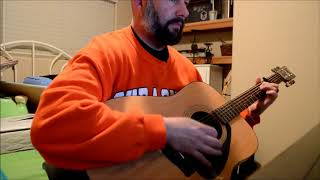 One Republic Counting Stars guitar cover -- beer