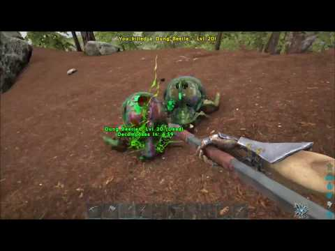 Dung Beetles attacked me gg - ARK Ragnarok