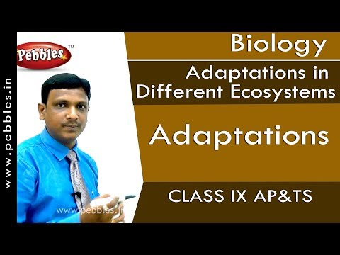 Adaptations : Adaptations in Different Ecosystems | Biology | Class 9 | AP&TS