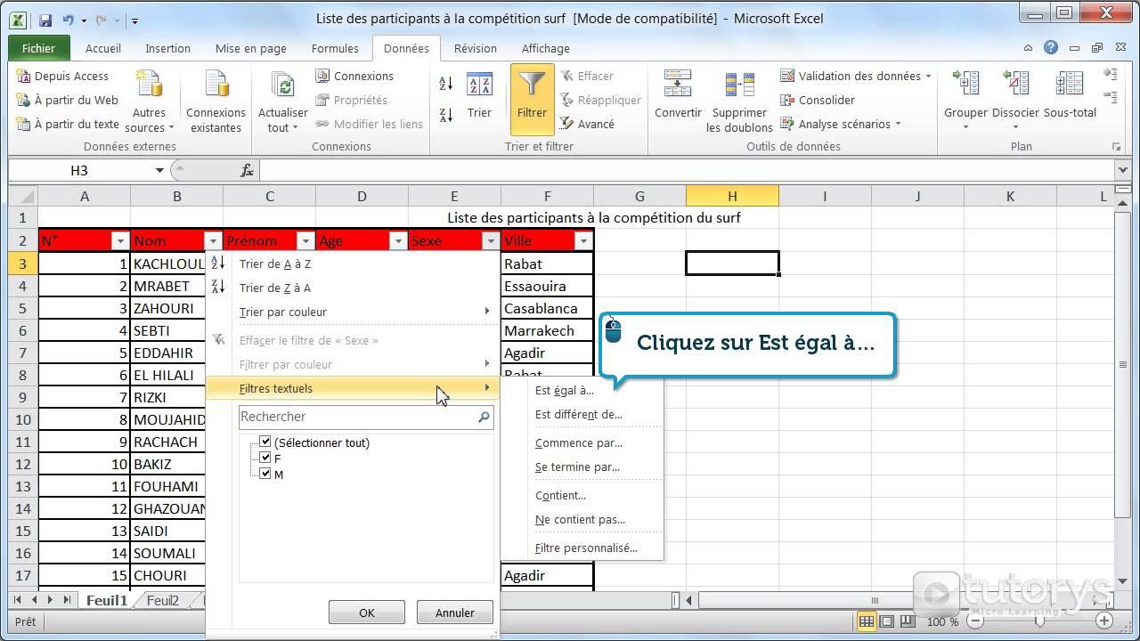 Comment filtrer les données d'un tableau avec Excel 2010 ? - YouTube