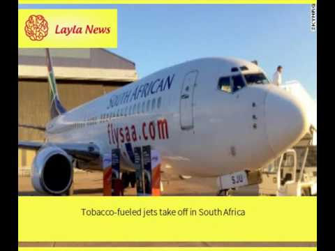 Tobacco-fueled jets take off in South Africa |  By : CNN