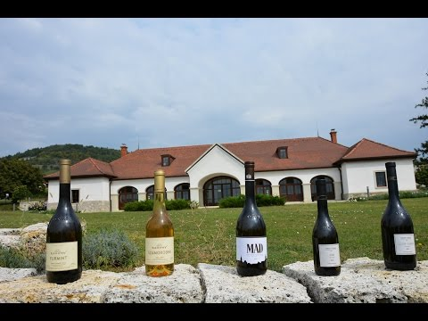 Come With Me To Hungary - the Tokaj Wine Region