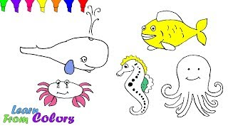 Sea Animals Coloring Pages For Kids Learn colors