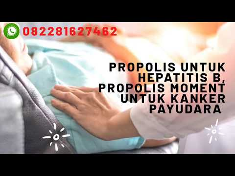 propolis untuk hepatitis b, propolis moment untuk kanker payudara 082281627462 WA