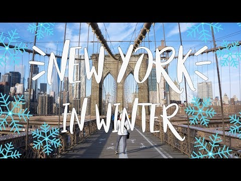 USA Travel Vlog | How to spend 4 days in New York over winter and Christmas!