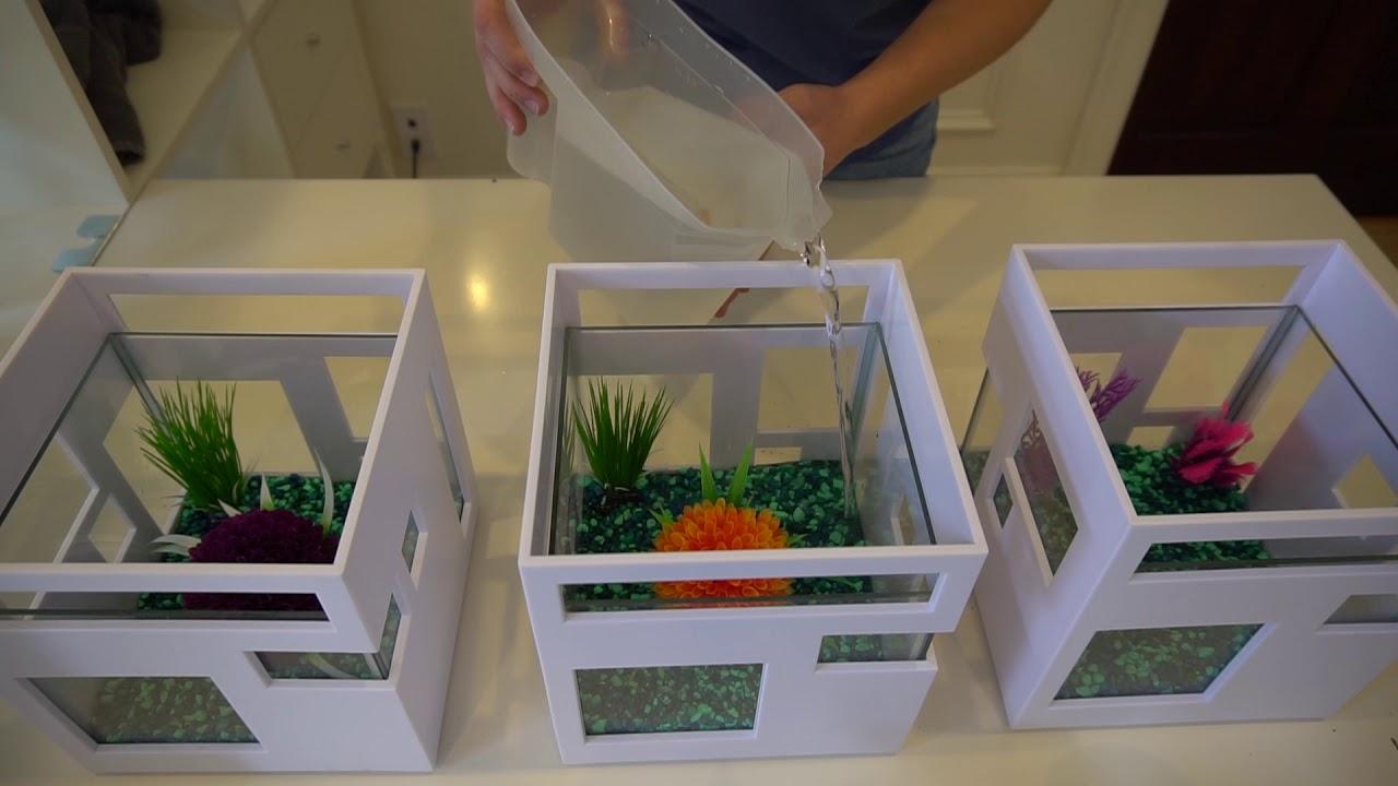 Umbra fish hotel aquarium youtube for Umbra fish hotel