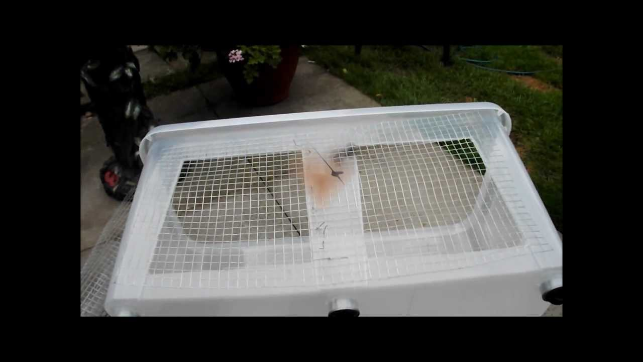 Tutorial how to make a bin cage for a syrian hamster for Plastic bin guinea pig cage