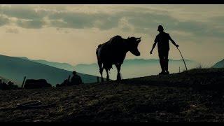 Storie di uomini e animali   trailer
