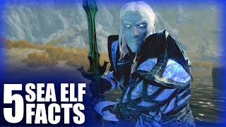 Skyrim - 5 Sea Elf Facts - Elder Scrolls Lore
