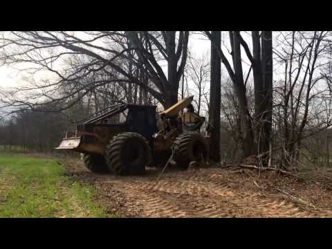 Rolling a big red oak tree into a tight hole!!!