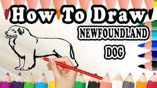 How To Draw A Newfoundland DOG | Drawing step by step Newfoundland Dog | Draw Easy For Kids