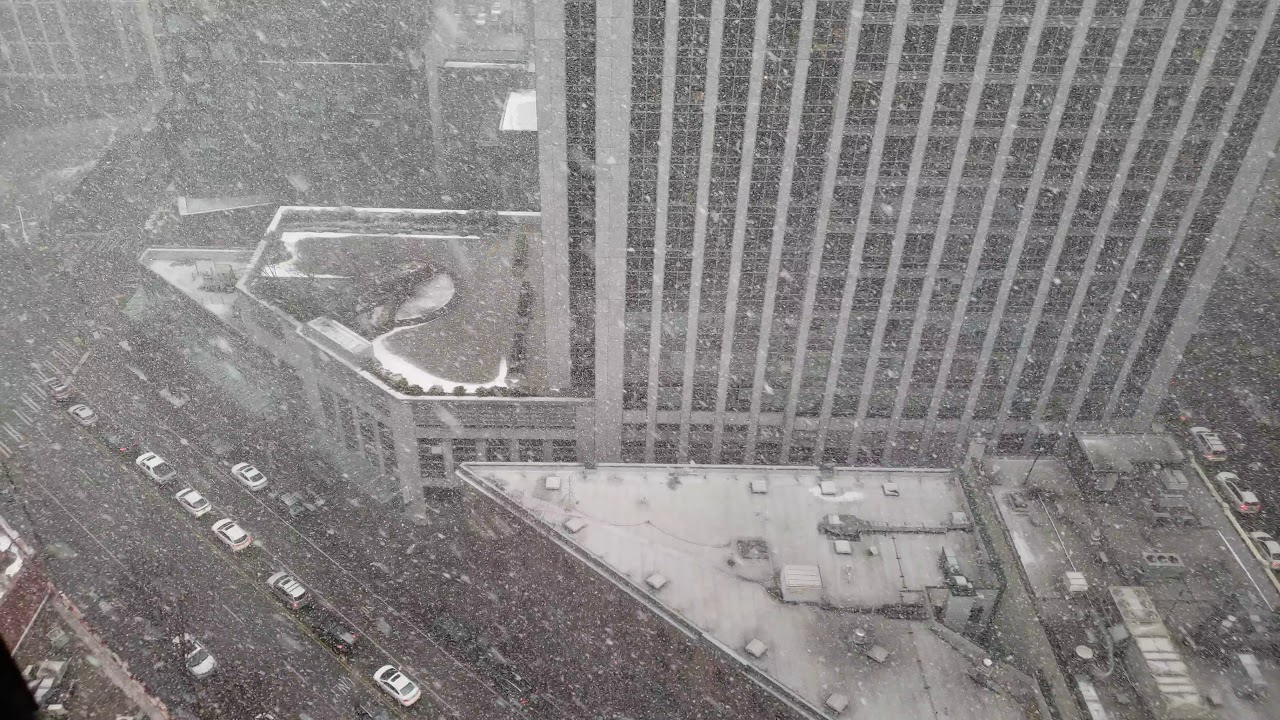 Seattle Downtown Snow Washington February 8, 2019 White Out Blizzard  Conditions