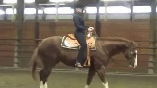 Ellie Becker, horsemanship schooling, no stirrups 2
