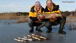 Жена словила щуку больше чем я! Жена на рыбалке 2 Рыбалка на льду Поддубные