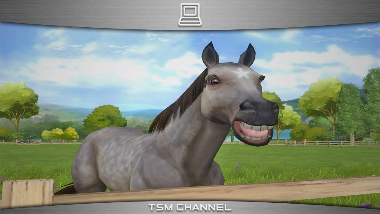 Spiele FГјr Pferde