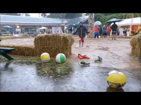 Feva Beach Party   Henshaws Knaresborough   August 2015