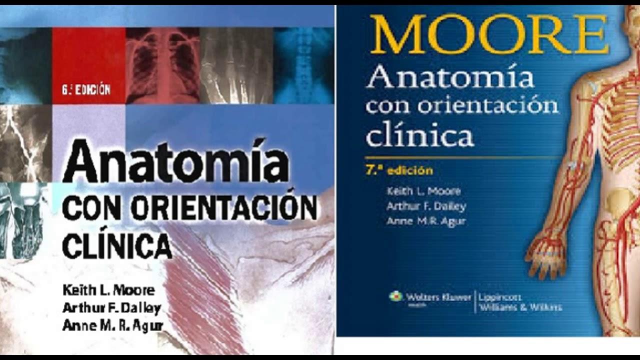 Descargar Anatomia de Moore 6ta y 7ma edición (Sin Publicidad) - YouTube
