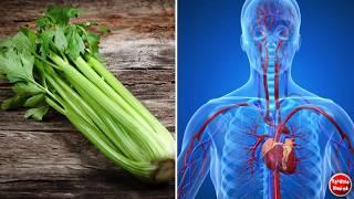 ȚELINA - Cel mai puternic afrodisiac natural care revigoreaza intregul organism