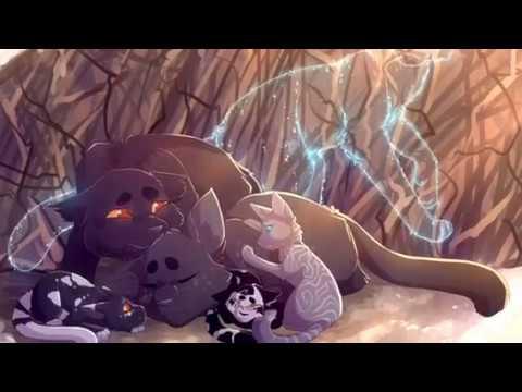 Top Ten Saddest Warrior Cat Dawn Of The...