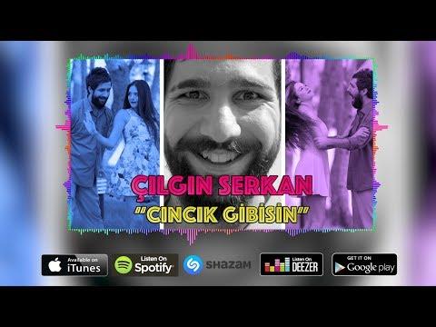 Çılgın Serkan - Cıncık Gibisin (Official Audio)