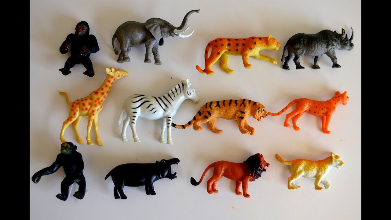Toy Names A Z : Lets go to the zoo kids z fun lots of animal toys school