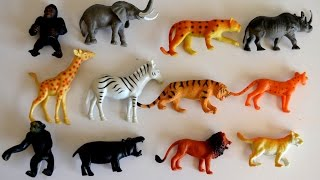 Lets Go to the ZOO-Kids Z Fun.lots of Animal toys,School Bus-Wild Life Learning Names n sounds