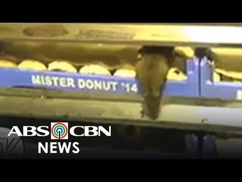 TV Patrol: Daga, nag-iikot-ikot sa tray ng donut