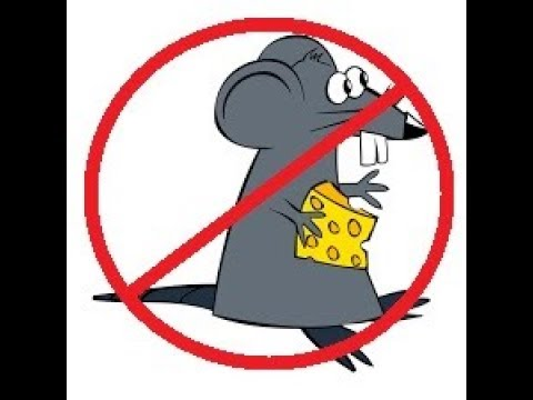 A QUICK TIP FOR RODENT CONTROL