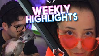 JennaJulien Twitch Highlights #40!