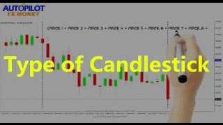 Candlestick Types ✫ Forex Training For Beginners