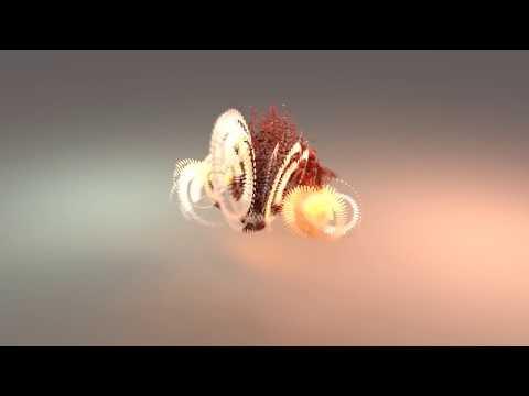 The Senses: Design Beyond Vision | Visual Sounds of the Amazon (with Audio Description)