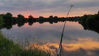 Рыбалка на Донки Крокодил. Рыбалка с Ночёвкой на Днепре. Лещ на Донки. Отличный Клёв Леща на Донки.