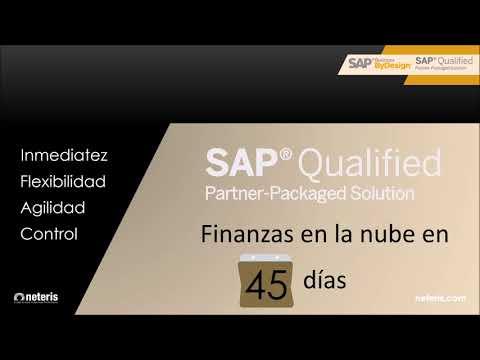 Sap Business Bydesign Finance In 45 Days Neteris