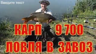 Видео рыбалка в Липецкой области смотреть онлайн
