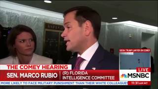 Rubio after Comey hearing