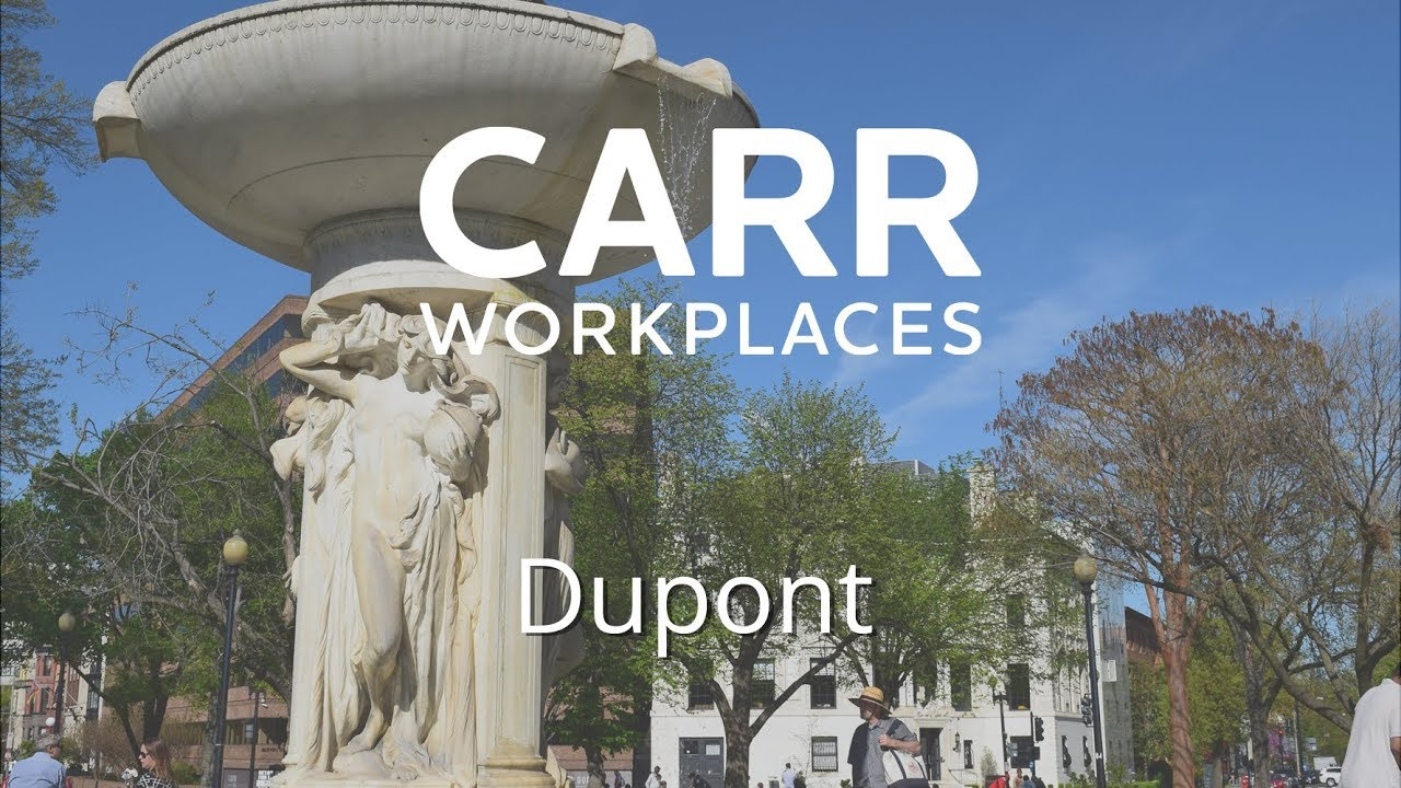 Carr Workplaces Dupont Tour